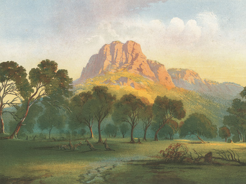 Above: Australian landscape from an 1890s reproduction of  a painting by Nicholas Chevalier (1828–1902).