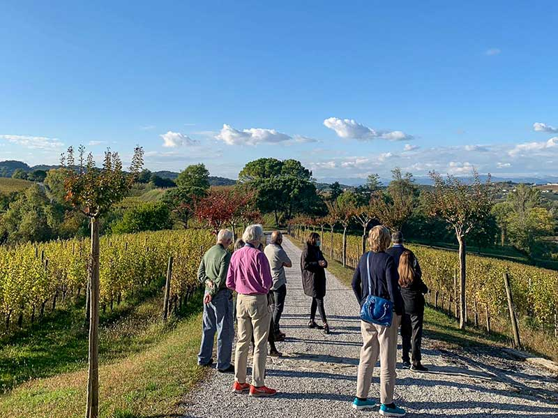 MRT lecturer Marc Millon savours the spirit of Italy in Friuli-Venezia Giulia